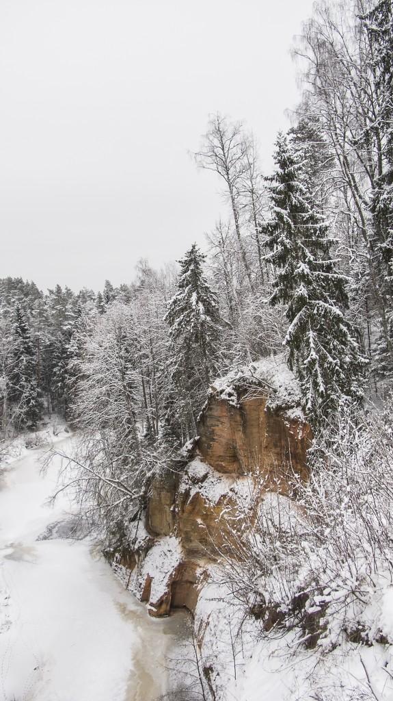 Slūni iezis (foto: I. Koidy)